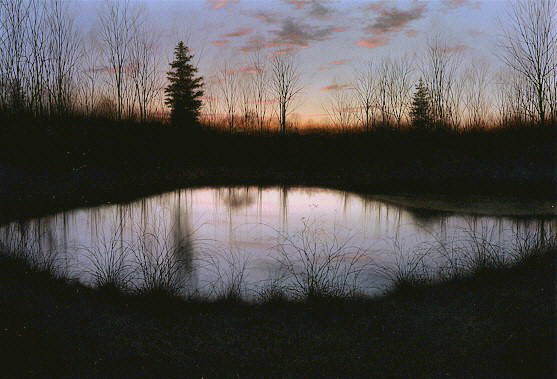 NIght_Pond